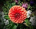 Butchart Gardens - Victoria, British Columbia, Canada (28906027650).jpg