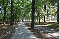 Bytom - Cycle path in park 01.jpg