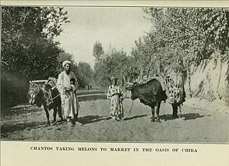 CHANTOS TAKING MELONS TO MARKET IN THE OASIS OF CHIRA.jpg