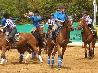 Horseball sport