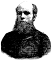 Carl Otto Løvenskiold.png