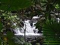 Cascade Paradise.jpg