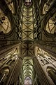 Cathédrale Saint-Samson de Dol-de-Bretagne - internal view 8mm.jpg