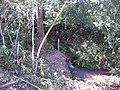 Caxinha - usina ester, Cosmópolis - SP. - panoramio (1).jpg