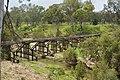 Ceratodus Rail Bridge 002.JPG