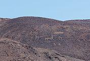 Cerros Pintados, Pampa del Tamarugal, Chile, 2016-02-11, DD 120.jpg
