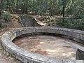 Charlotte's well lokrum 2019-08-23 2.jpg