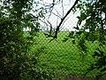 Chelveston Airfield - geograph.org.uk - 228452.jpg