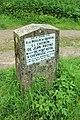 Chemin sous Vertcœur à Milon-la-Chapelle le 18 mai 2015 - 2.jpg
