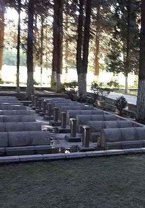 Chinese Cemetery (Danyor) - Image: Chinese Grave Yard