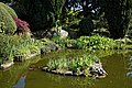 City of London Cemetery Terrapin pond 06.jpg