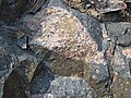 Clast-rich impact pseudotachylite (Sudbury Breccia, Paleoproterozoic, 1.85 Ga; Windy Lake Northwest roadcut, Sudbury Impact Structure, Ontario, Canada) 29 (46950089894).jpg