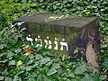 Cmentarz żydowski w Zabrzu49.jpg