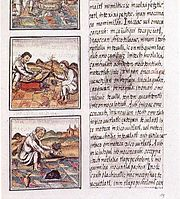 Page 51 of Book IX from the Florentine Codex.  The text is in Nahuatl written with a Latin script.
