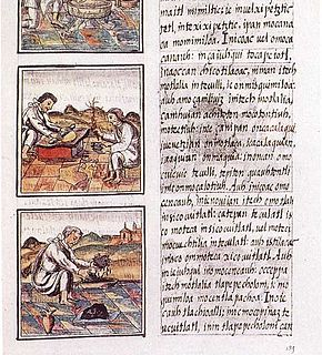 <i>Florentine Codex</i> book by Bernardino de Sahagún