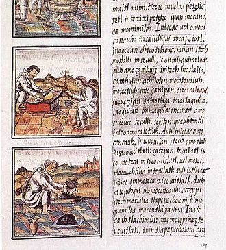 Mexican literature - Page 51 of Book IX from the Florentine Codex. The text is in Nahuatl written with a Latin script.