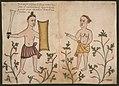 Codice Casanatense Halmaherans.jpg