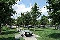 College Point Fields td (2019-08-03) 122.jpg