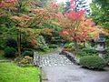 Colors Just Turning (5099399989).jpg