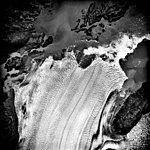 Columbia Glacier, Calving Terminus, September 26, 1981 (GLACIERS 1413).jpg