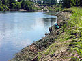Connecticut River restoration Farilee VT4.jpg
