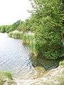 Cosmeston, West Lake - geograph.org.uk - 836102.jpg