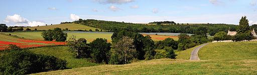 Cotswolds Panorama Fields