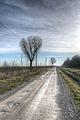 Country Road - Sant'Agata Bolognese, Bologna, Italy 06.jpg