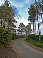 Cragside Country Park - geograph.org.uk - 787226.jpg