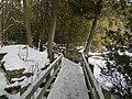 Crawford Lake Trail, Ontario, Canada2.JPG
