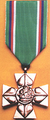 Cross of Merit of the Minister of Defence of the Czech Republic 1st Class.png