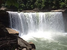 Cumberland falls 2015 1.jpg