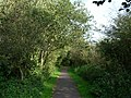 Cycle Track to Moor Row - geograph.org.uk - 573556.jpg