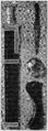 D373- épée, hache et lance de chilpéric -liv3-ch2.png