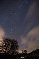 Day 4- Stars -3 (8431512626).jpg