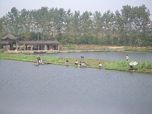 Fishing industry in China - People fishing on a system of ponds constructed on a bay of the Daye Lake