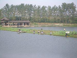 Fish pond - Fishing in a fish pond system at Daye Lake near Daye, China
