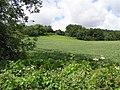 Devenish Townland - geograph.org.uk - 487537.jpg