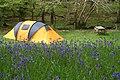 Dinas camping - geograph.org.uk - 1731943.jpg