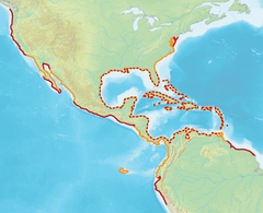 Distribution Map Brown Pelican (Pelecanus occidentalis).png