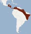 Distribution of Micronycteris schmidtorum.png