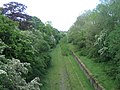 Disused railway near Sandhill - geograph.org.uk - 490524.jpg