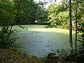 Domaine de keraveon - panoramio (7).jpg