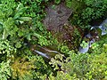 Dominica, Karibik - Trois Pitons National Park - Waterfall in the Rainforest - panoramio.jpg