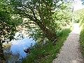 Donauversickerung bei Immendingen - panoramio (3).jpg