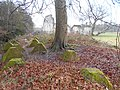 Dragon's Teeth, Waverley Abbey 03.jpg