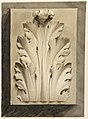 Drawing, Acanthus leaf- from a cast, 1919 (CH 18397839).jpg