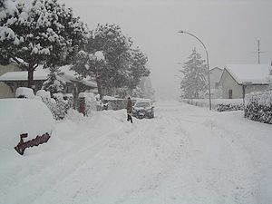 Dresano - Via delle camelie, Villaggio ambrosiano, covered by snow in January 2006