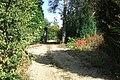 Driveway, Westwood Heath Road - geograph.org.uk - 583220.jpg