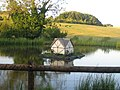 Duck pond, Manor Farm - geograph.org.uk - 909617.jpg
